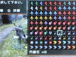 円盤石49.jpg